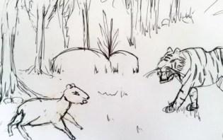 macan dapat menemukan persembunyian si kancil