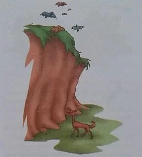 Cerita Fabel Pendek Serigala Merpati Dan Burung Bangau