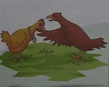 Kumpulan Cerita Dongeng Dari Filipina Burung Elang dan Ayam Betina