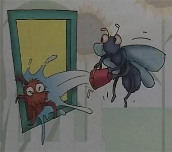 Kumpulan Cerita Untuk Anak Anak Laba Laba Dan Lalat