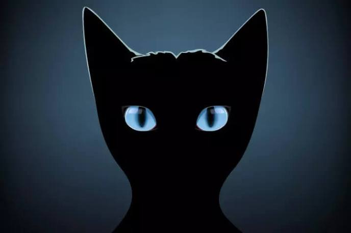 Cerita Seram Menakutkan Kucing Hitam