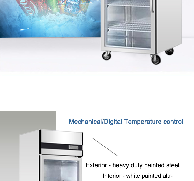 Commercial Cold Food Display