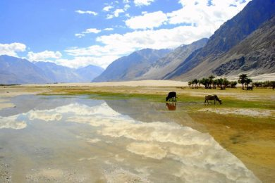 Leh Crystal Clean Water