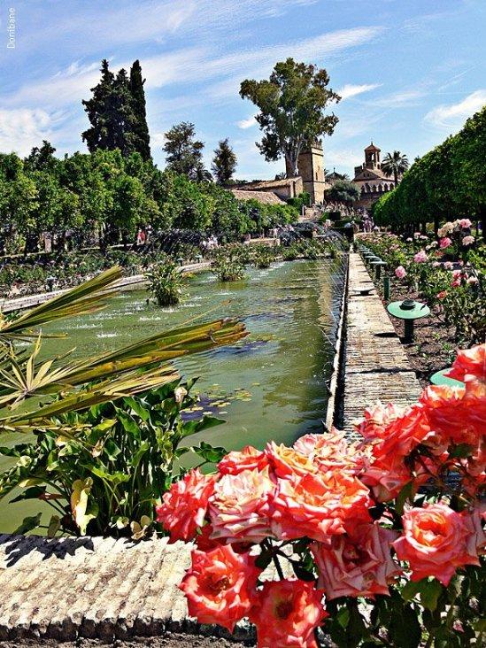 """""""Los jardines de Córdoba"""" por Donibane"""