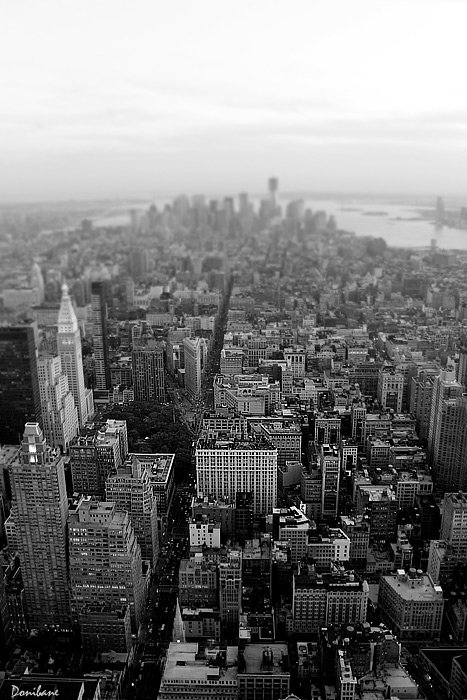 NYC in B&W by Donibane