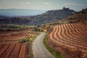 Vistas de La Rioja por Donibane
