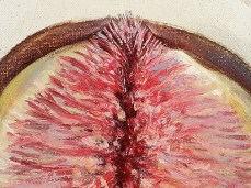 """""""Fig"""" - DETAIL 2, oil on canvas - 72 x 72 cm, 2005"""