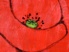"""""""Papaver"""" - DETAIL 2, acrylic, oil on dyed canvas - 218 x 280 cm, 2006"""