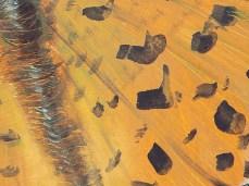 """Scarlet Rain"" - DETAIL 2, oil on canvas - 44.5 x 38 cm, 2008"