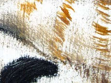 """Cat"" - DETAIL 2, oil on canvas - 50 x 70 cm, 2009"