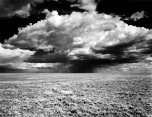 2006084 Approaching Storm, Rita Blanca NGL, TX 2006