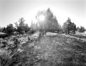 2006153 Sunburst, Crooked River NGL, OR 2006