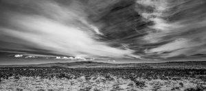 20150412D Otero Mesa No.1, NM 2015