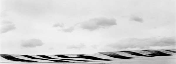 96288 Wheatfield, Depuyer, MT 1996