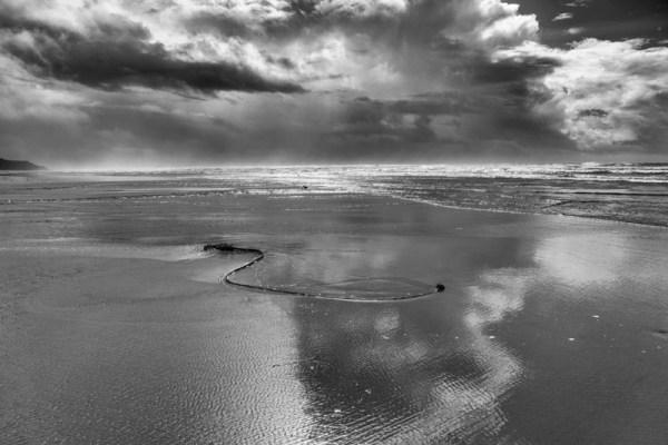 20190559D Oregon Beach No.2, 2019