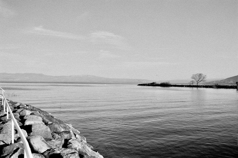B and W Ilford Delta 400 Sea of Galilee