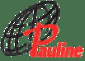 Logo for Pauline Books and Media