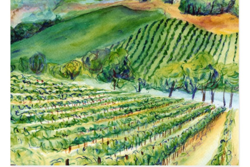 California Winery Vineyard Watercolor Art Postcard
