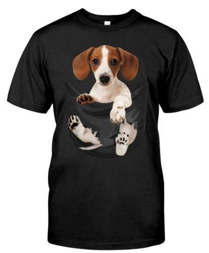 dachshund-pocket