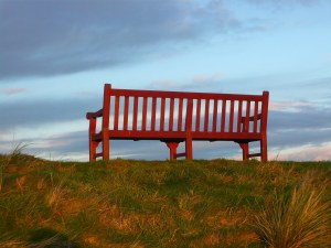 A park bench facing the sky.