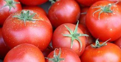 vegan-tomato-sauce
