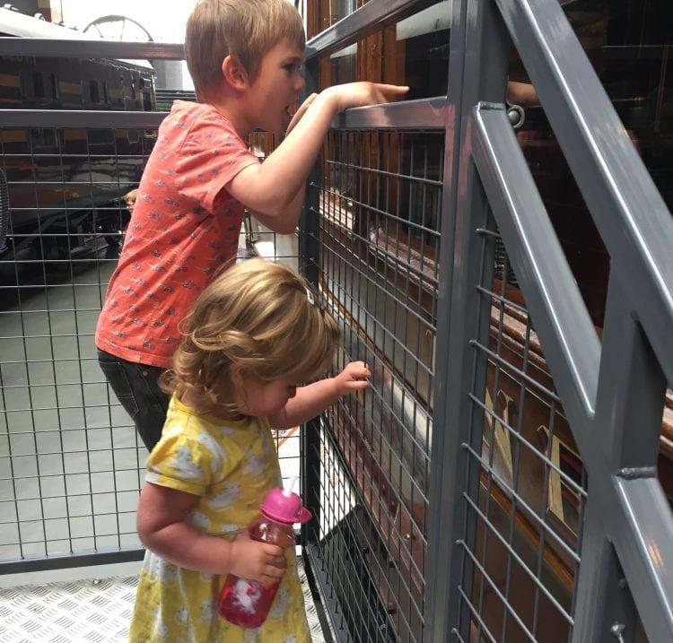 bobsy and the boy feeding at the farm