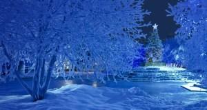 SnowyChristmas_EN-AU2022031457