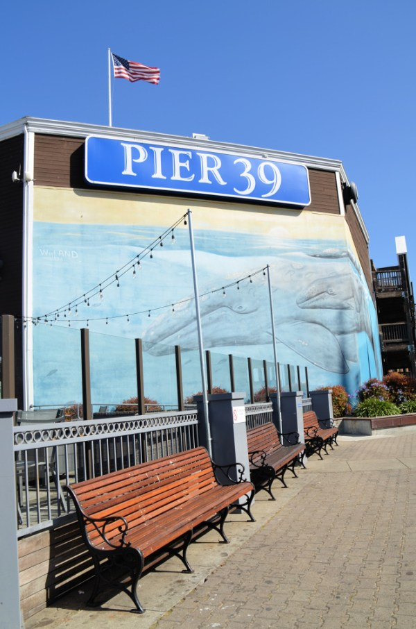 Spending the Day at Pier 39