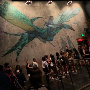 Avatar Flight of Passage Wait Time is Worth it
