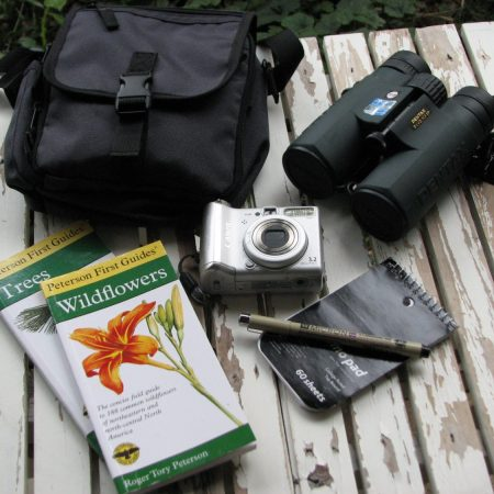 My field kit - mid-priced binoculars, field bag, small camers, notepad, field guides.