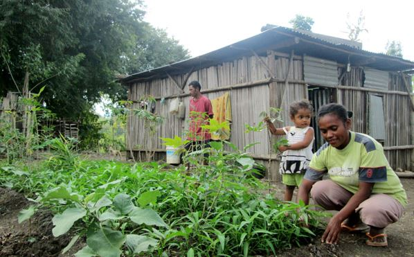 Home-garden-Indonesia.-Credit-Indonesia.org_