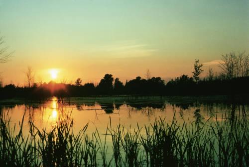 Sunset at Iroquois National Wildlife Refuge. USFWS/public domain.