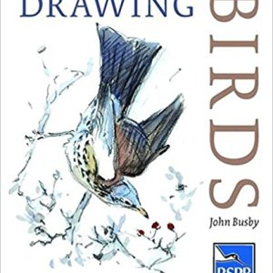cover_Drawing BIrds