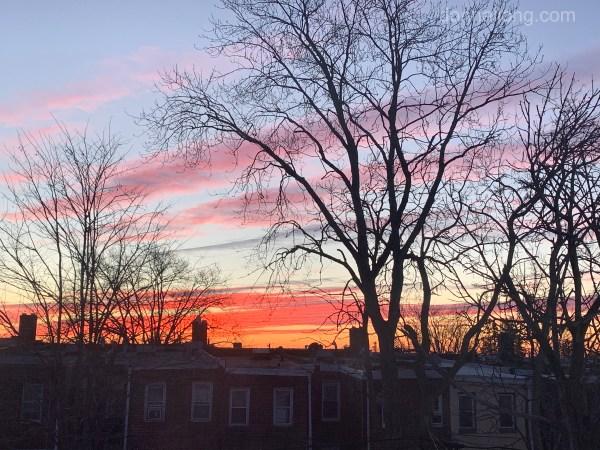 A rose-tinted sky