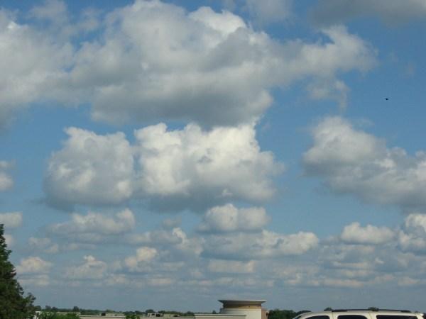 lines of cumulus clouds