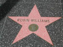 Robin Hollywood Star
