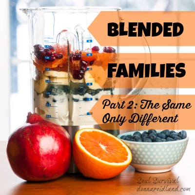 Blended Families Part 2: The Same Only Differednt -