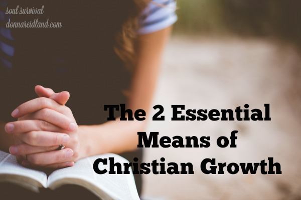 """The 2 Essential Means of Christian Growth"" + LINKUP"