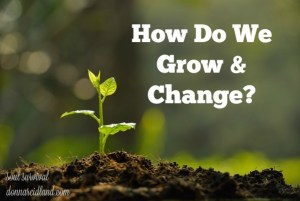 "How Do We Grow & Change? - A couple of weeks ago I wrote about prayer and Bible study and how they are ""The 2 Essential Means of Christian Growth."" This week I want to talk more about how those two means work themselves out on a practical level."