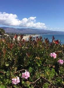 leadbetter beach santa barbara