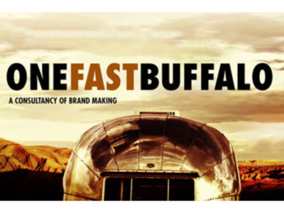 one fast buffalo -- Donna Scoggins copywriting client