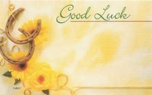 Good Luck floral enclosure card - horseshoes