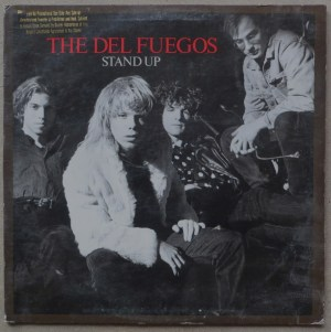 Stand Up by The Del Fuegos