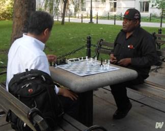 Il gioco delli scacchi è molto apprezzato