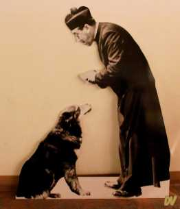 Don Camillo