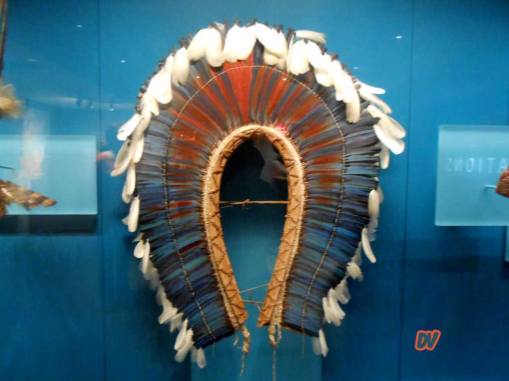 Museo_Americani_copertina