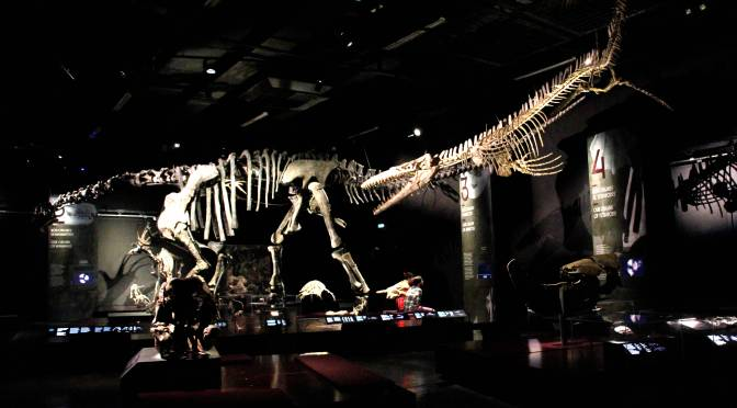Il Museo del mese di Novembre: il Museo della Confluenza di Lione