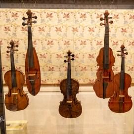 Alcuni strumenti ospitati nelle sale della musica