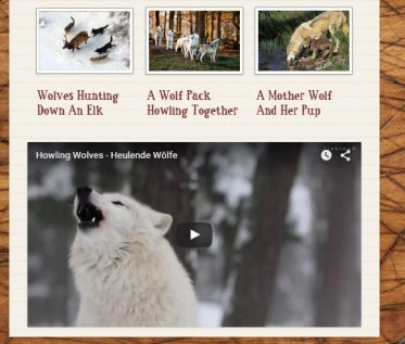 Smore lets you even add pictures and video clips!