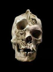 NephilimSkull4